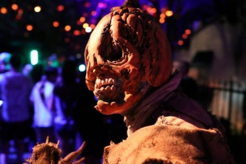 Celebrate Halloween at Orlando's Theme Parks