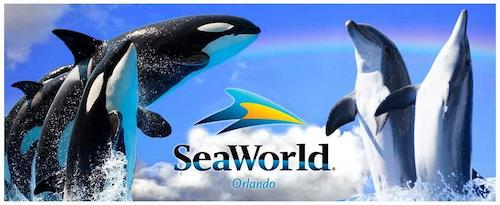 Top 8 Reasons SeaWorld Orlando Rocks!