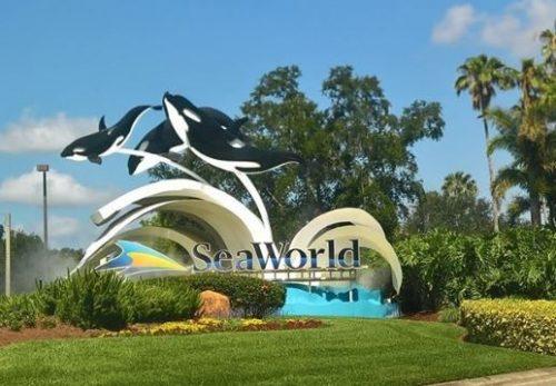 Top Ten Reasons To Visit SeaWorld Orlando in 2019